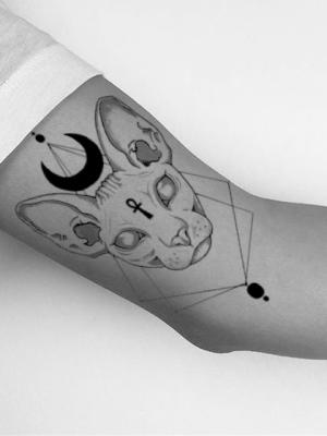 gato egipcio tatu brazo